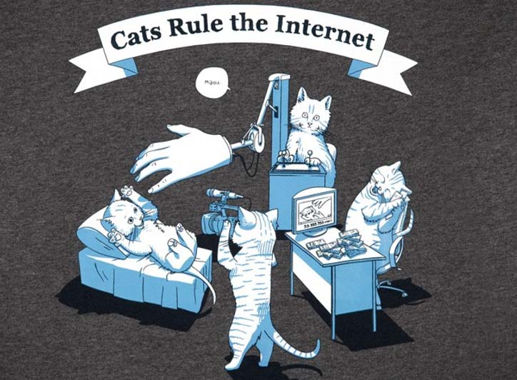 Cats Rule the Internet