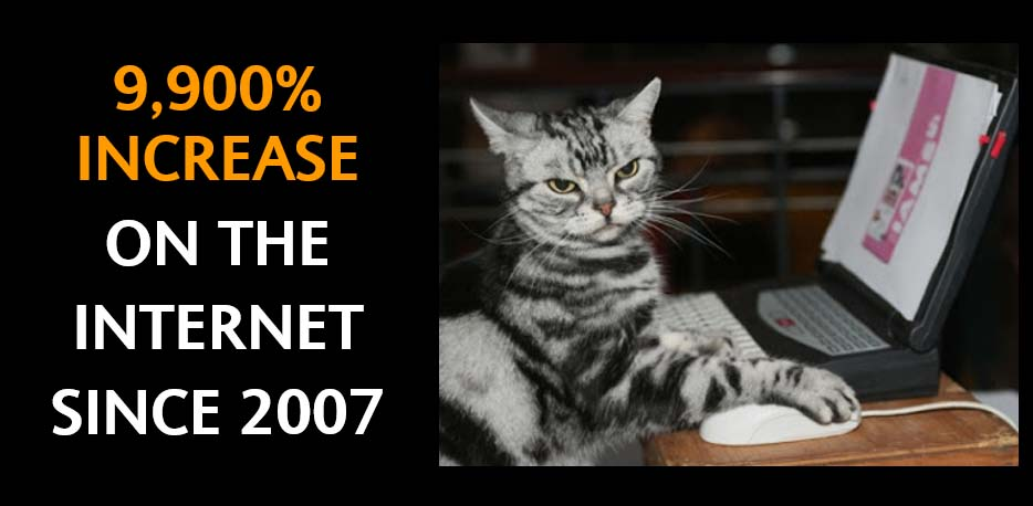 Increase on the Internet